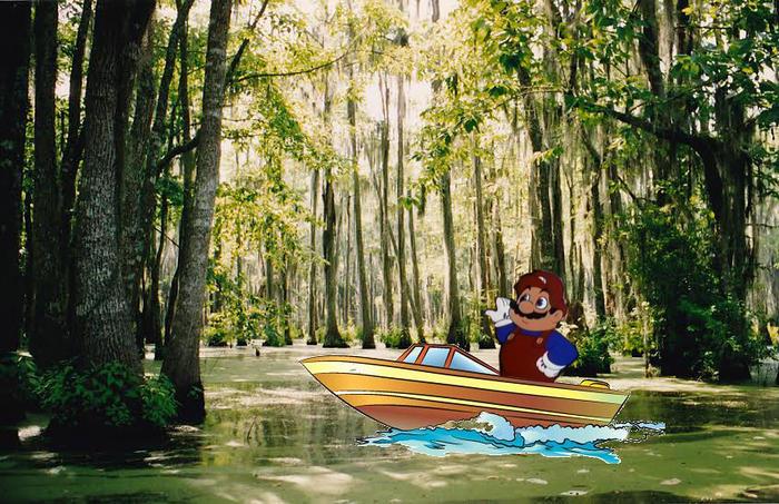 Mario Takes America
